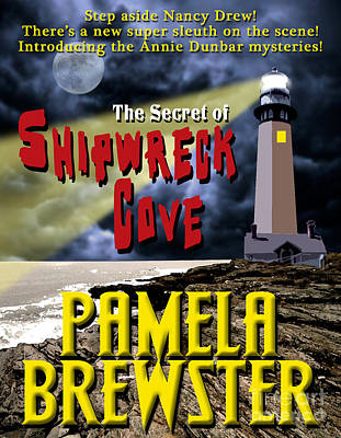 Pocketbook Cover Design Photograph - The Secret Of Shipwreck Cove by Mike Nellums