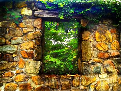 Photograph - The Secret Window by Becky Lupe