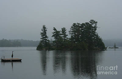Waterscape Photograph - The Sentinel by Barbara McMahon