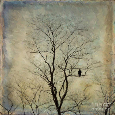 Photograph - The Sentinel by Kerri Farley