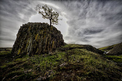 Photograph - The Sentinel by Robert Woodward