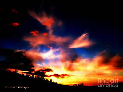 Photograph - The Setting Sun by Gail Bridger