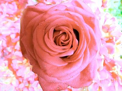 Photograph - The Shabby Pink Rose  by Saundra Myles