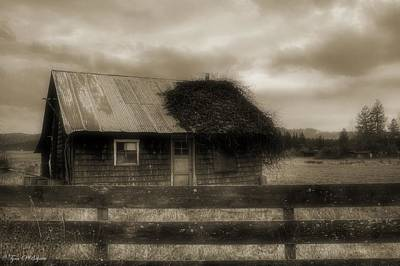 Photograph - The Shack by Tyra  OBryant