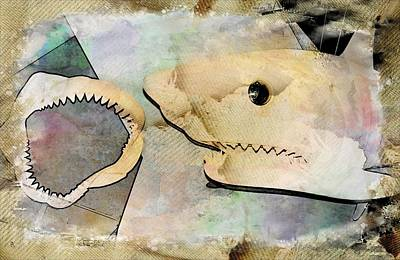 Photograph - The Shark by Bob Pardue