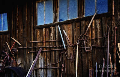 Photograph - The Sharpest Tool On The Shed by Lee Craig