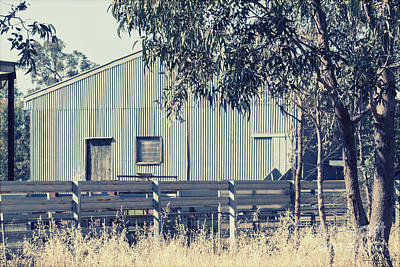 Photograph - The Shearing Shed by Linda Lees