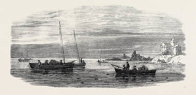 Fife Drawing - The Shellfish Supplies Crab Fishing Off Fife Coast 1862 by English School