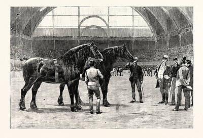 Final Drawing - The Shire Horse Show At The Agricultural Hall The Final Duel by English School