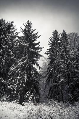 West Virginia Landscape Photograph - The Silent Season by Shane Holsclaw