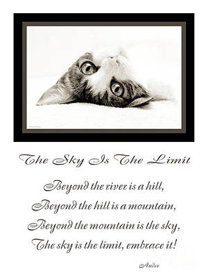 Andee Design Feline Photograph - The Sky Is The Limit V 3 by Andee Design