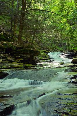 Photograph - The Slide #1 - Loyalsock State Forest by Joel E Blyler