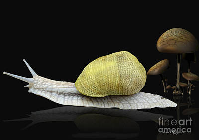 Digital Art - The Snail by Melissa Messick