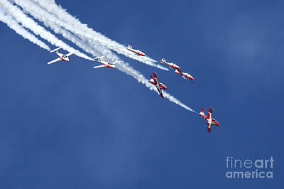 Photograph - The Snowbirds In Harmony by Bob Christopher