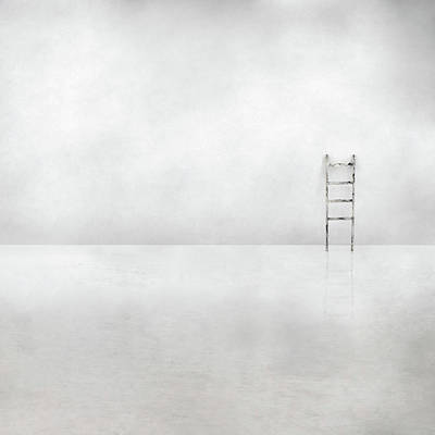 Ladder Photograph - The Social Ladder by Gilbert Claes
