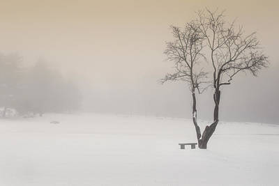 Southern New England Photograph - The Solitude Of Winter by Bill Wakeley