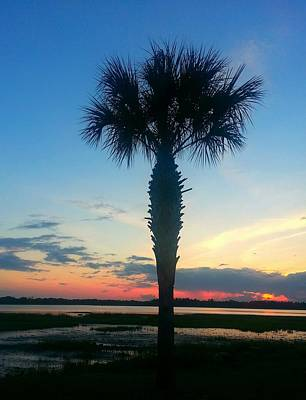 Art Print featuring the photograph The Solo Palm by Joetta Beauford