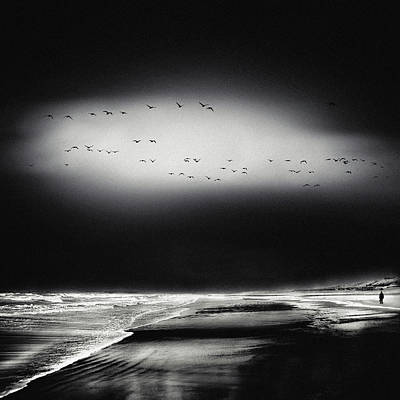 Bird Landscape Photograph - The Song Of The Wet Sands by Piet Flour