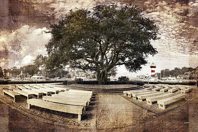 Photograph - The Song Tree by Steven Llorca
