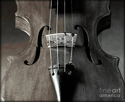 Violin Photograph - The Sound Of Homemade Lightning  by Steven Digman