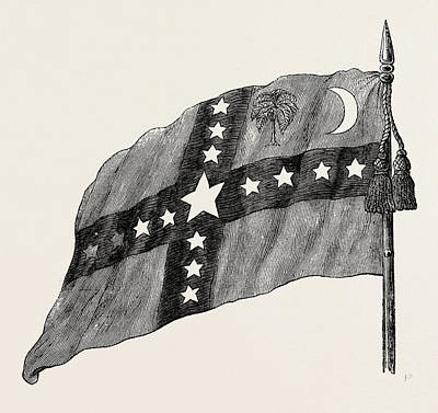 The South Carolina Flag, United States Of America Art Print by American School