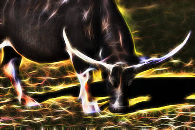 Photograph - The Sparks Of Water Buffalo by Miroslava Jurcik