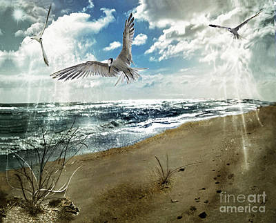 Digital Art - The Spirit Of Flight by Laurel D Rund
