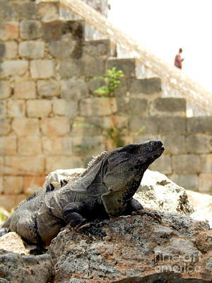 Photograph - The Spirit Of Uxmal In Yucatan Mexico by Michael Hoard