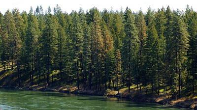 Photograph - The Spokane River On Easter Sunday 2014 by Ben Upham III
