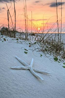 The Starfish On Orange Beach Art Print