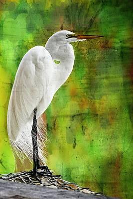 Great White Egret Photograph - The Statue by Suzi Harr
