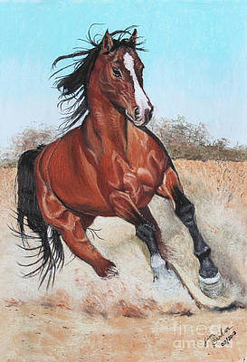 Horse Pastels Painting - The Steed by Jim Barber Hove