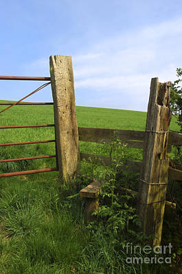 Photograph - The Stile by Doug Wilton