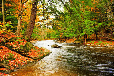 Photograph - The Stream by Bill Howard