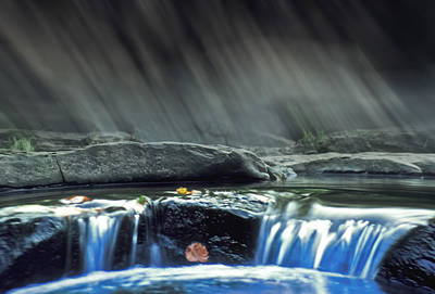 Photograph - Stream Of Tranquility by Kellice Swaggerty