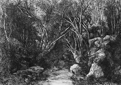 Landscapes Drawing - The Stream Through The Trees by Rodolphe Bresdin