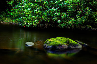 River Scenes Photograph - The Stream's Embrace by Michael Eingle