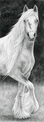 Gypsy Vanner Horse Drawing - The Stuff Of Fairy Tales by Katherine Plumer