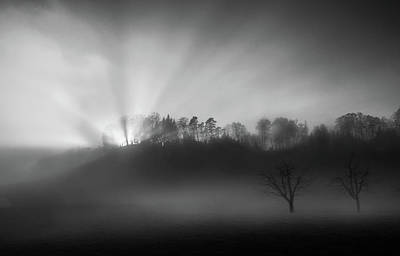 Light Beams Photograph - The Sun In The Fog by Nic Keller