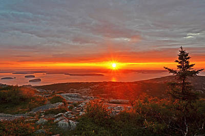 The Sunrise From Cadillac Mountain In Acadia National Park Art Print
