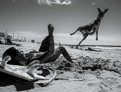 Beach Action Wall Art - Photograph - The Super Dog !!! by Luis Vasconcelos