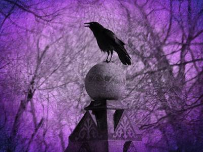 The Surreal Caw Art Print by Gothicrow Images