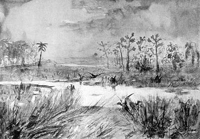 Swamp Drawing - The Swamp Of The Pterodactyls by Mary Evans Picture Library