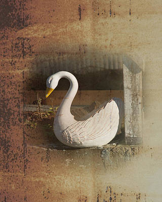 Photograph - The Swan Planter by Gary Silverstein