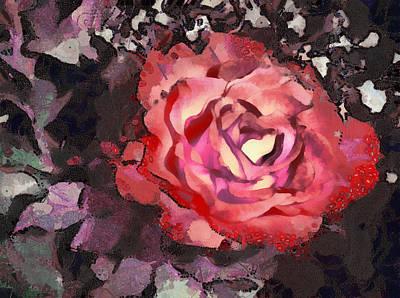 The Sweetest Rose 3 Art Print