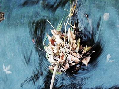 Photograph - The Swirl by Todd Sherlock