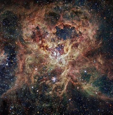 Science Fiction Photograph - The Tarantula Nebula  by Celestial Images