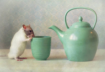 Rodent Wall Art - Photograph - The Teapot by Ellen Van Deelen