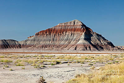 The Tepees Petrified Forest National Park Art Print by Fred Stearns
