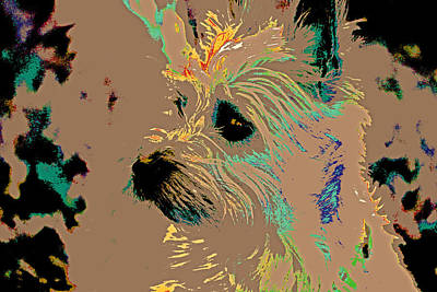 The Terrier Art Print by Lynn Sprowl